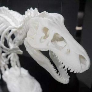 Фото 3D печати динозавра
