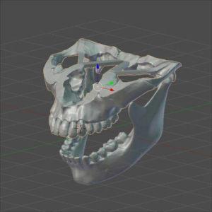 Фото 3D моделирования челюстей