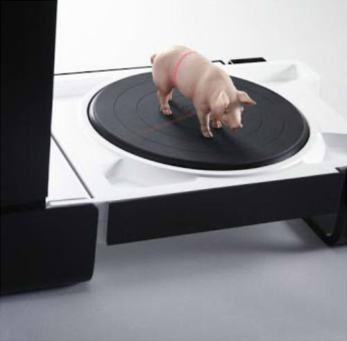3D сканирование фигурки свиньи