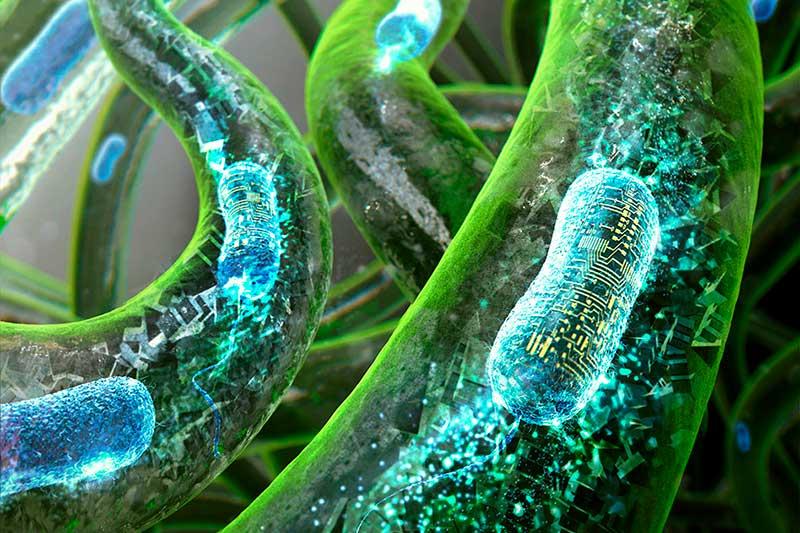 Фото 3D печать бактериями 2