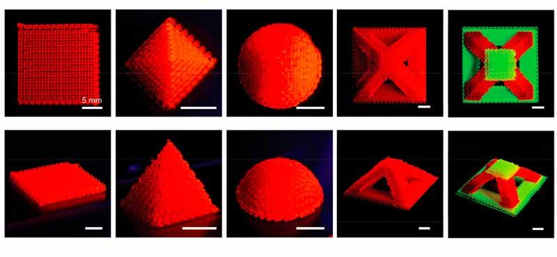 Фото 3D печать бактериями 3