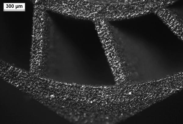 Фото MLS технология или 3D печать микроизделий металлами 5