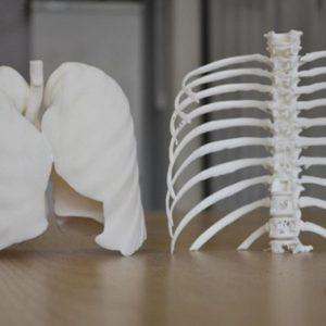 Фото Физические и CAD-модели на основе КТ и МРТ 3д services 8