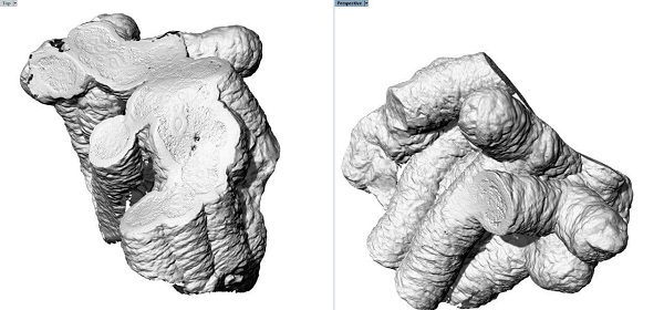 Фото 3D сканирование драгоценных камней 3